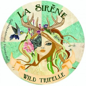 Wild Tripelle - La Sirène's first 100% spontaneously fermented beer